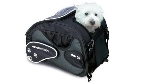Tu mascota en moto con la bolsa Bagster Friendy