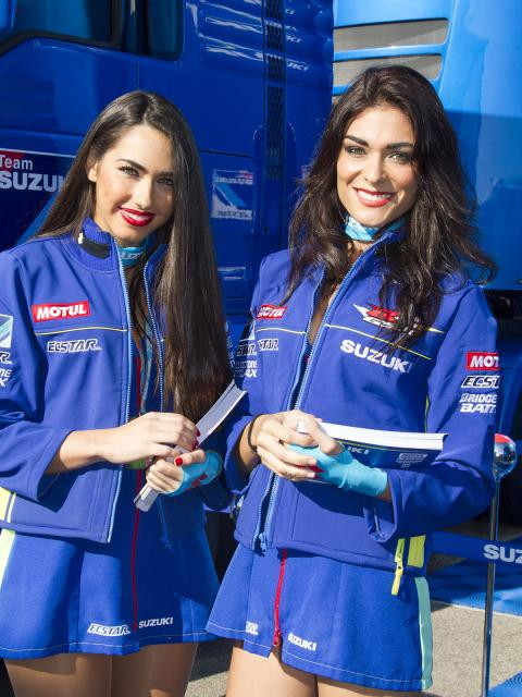 Suzuki-Paddock-Girls