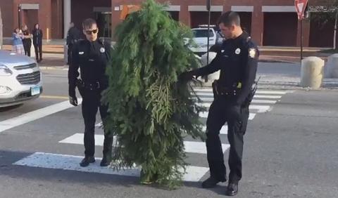 ¿Qué tiene de gracioso cortar el tráfico vestido de árbol?