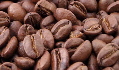 La empresa que quiere transformar café en combustible