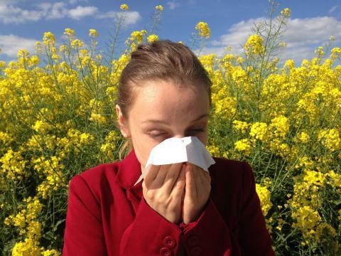 A falta de una fórmula mágica, estos15 consejos útiles para combatir la alergia primaveralayudan a reducir sus síntomas.