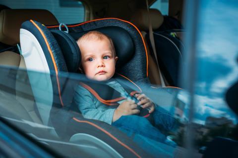 Sillita bebé coche