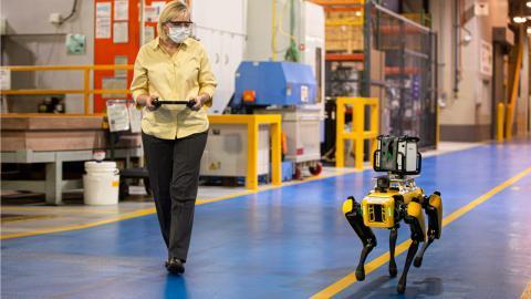 ford robot cuatro patas