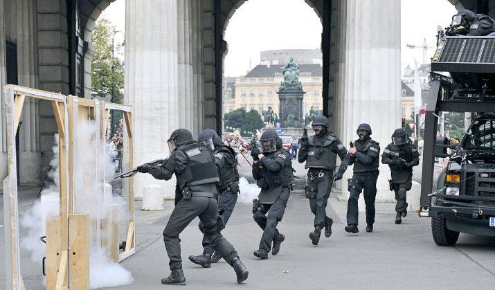 Fuerzas especiales alemanas
