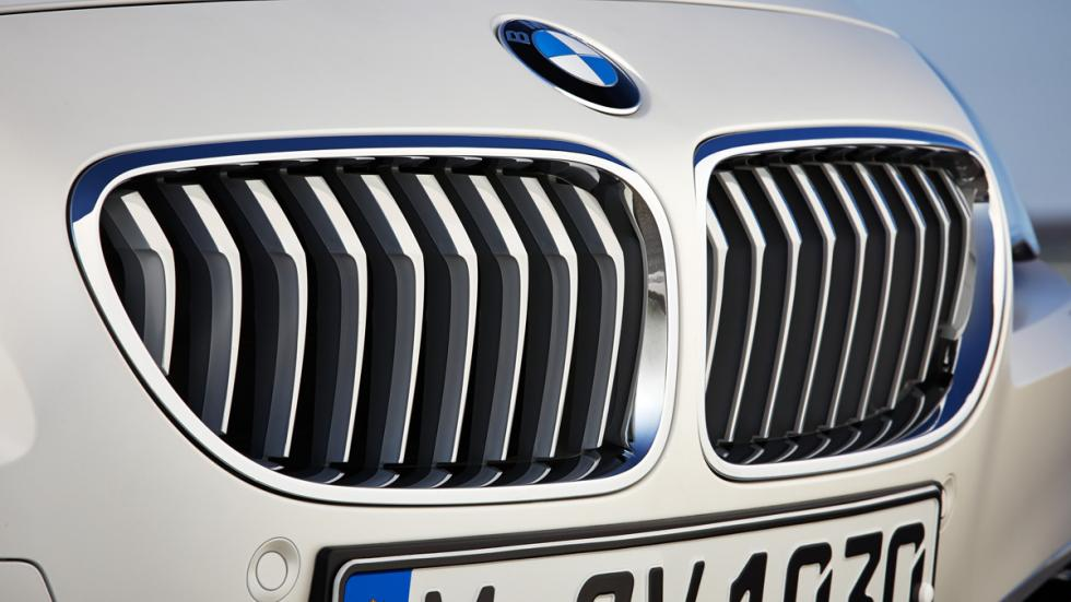 BMW Serie 6 Gran Coupé 2015 riñones