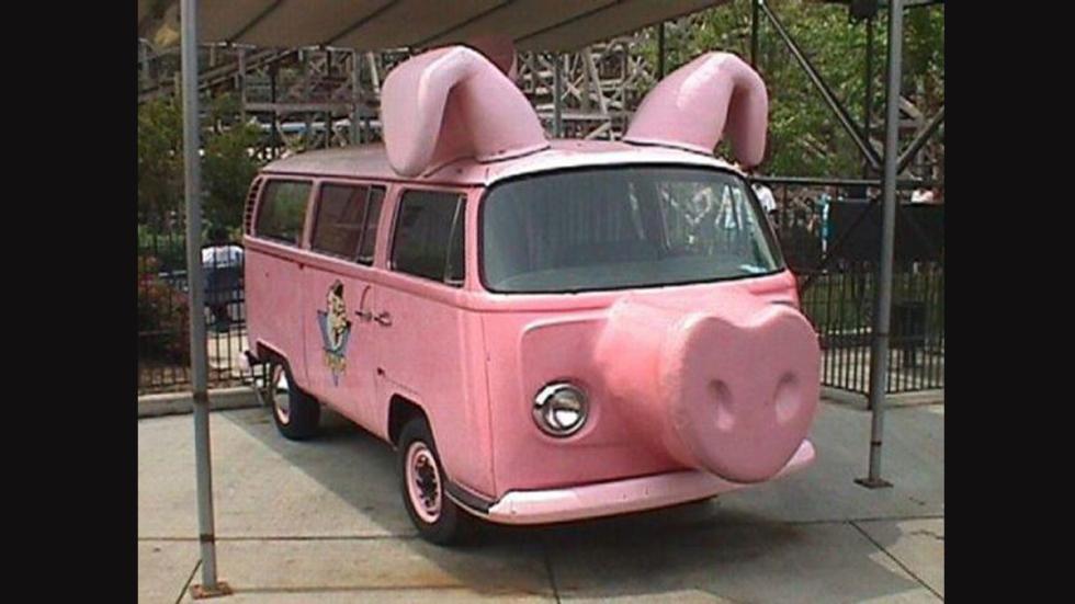 coches-parecen-animales-cerdo
