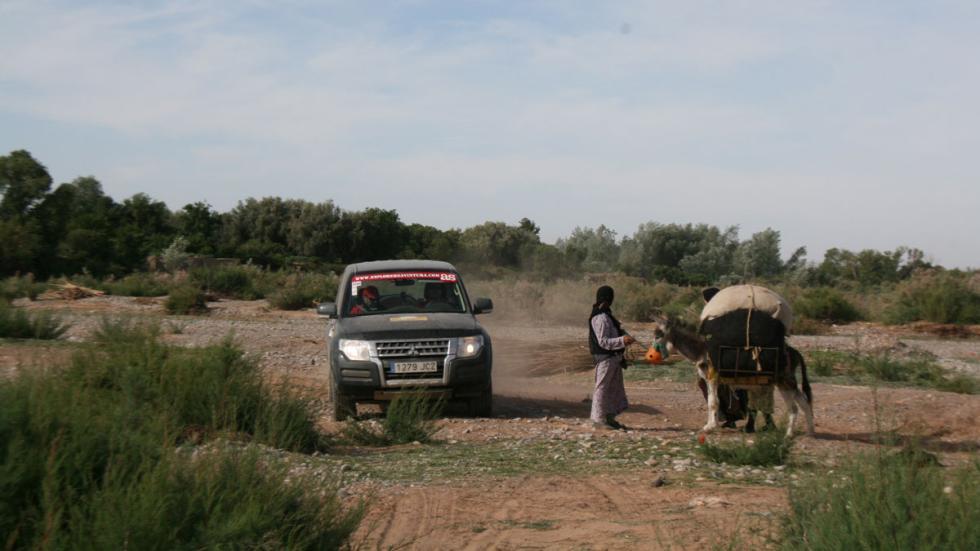 Explorers Aventura 2015 señoras burro