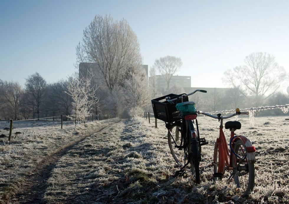 Bicicletas en Eindhoven