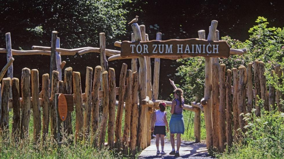 Parque Nacional de Hainich