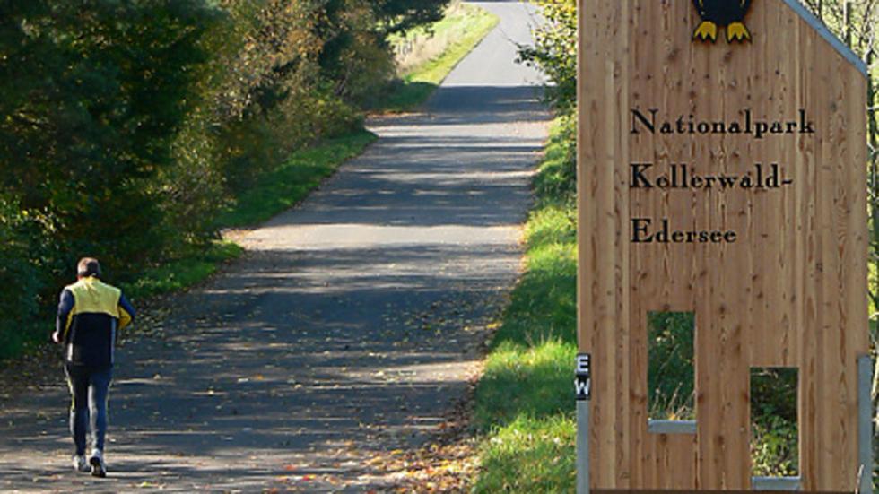 El Parque Nacional de Kellerwald-Edersee en Hesse