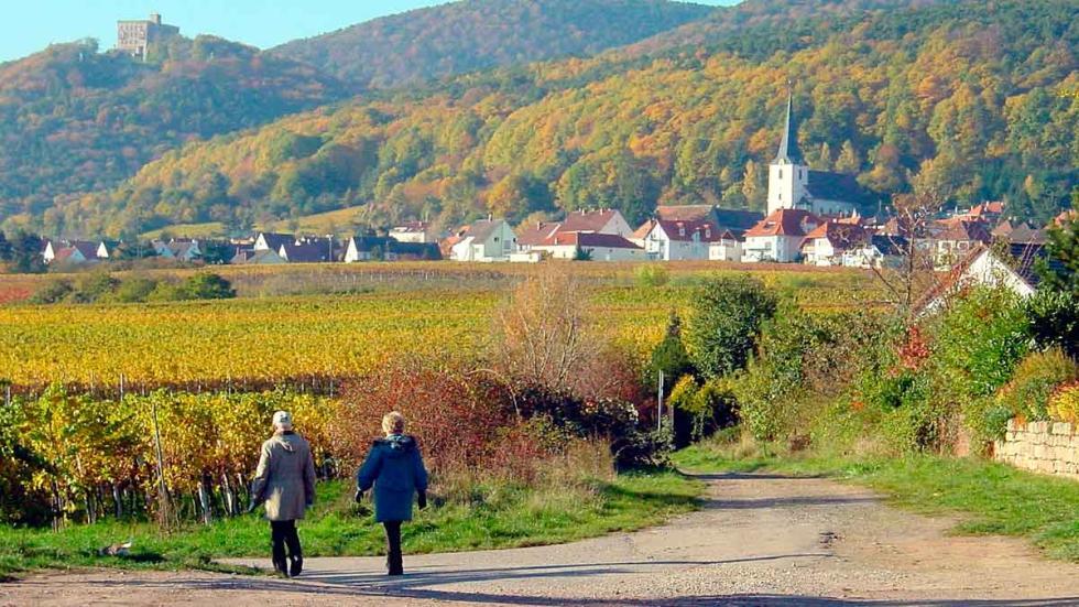 Vistas del Castillo de Hambach Castle y Hambach-Neustadt.