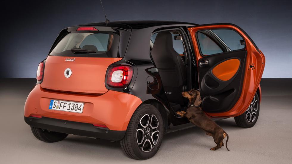 Smart ForFour para perros