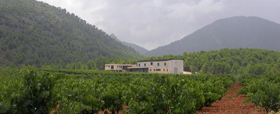 Ruta del vino de Bullas.
