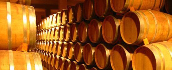 Ruta del Vino de Navarra.