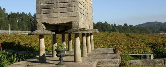 Ruta del Vino de las Rias Baixas.