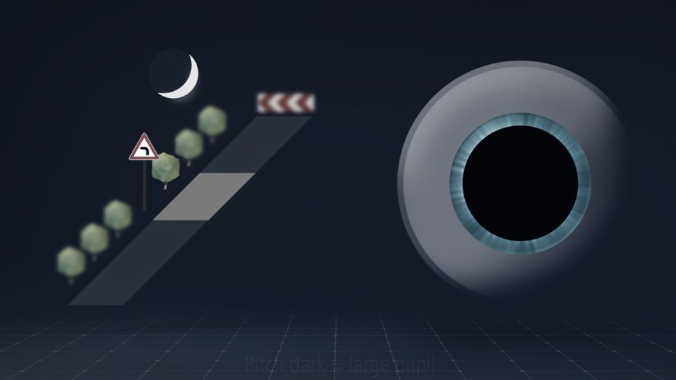 DriveSafe: pupila dilatada con poca luz