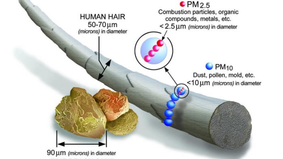 cuán pequeñas son las PM 2,5