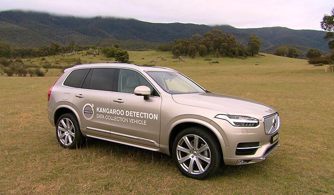 Sistema detección canguros Volvo 2