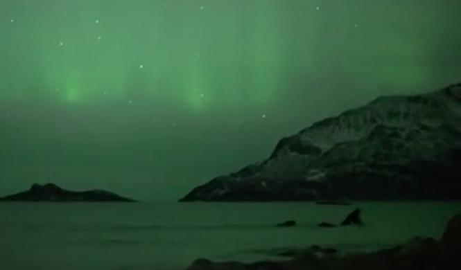 aurora boreal ballenas halloween 4