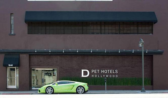 Hotel D Pets 2