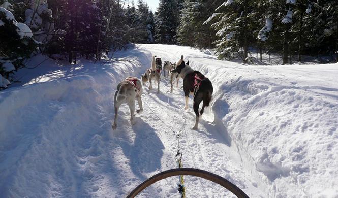 aventuras nieve 4