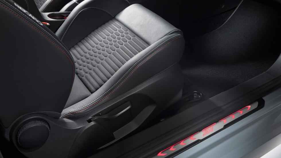 Ford Fiesta ST200 2016 moldura
