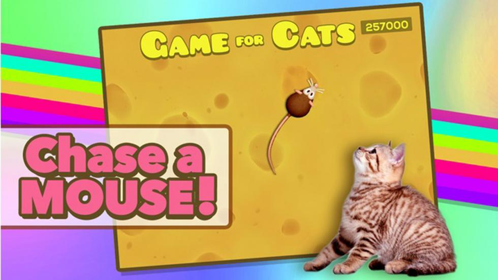 app games for cats