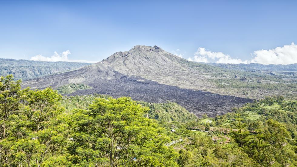 selva herapan isla sumatra