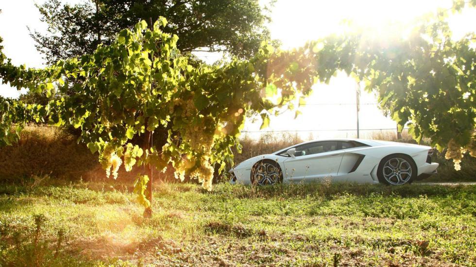 curiosidades-Lamborghini-Aventador-propietarios