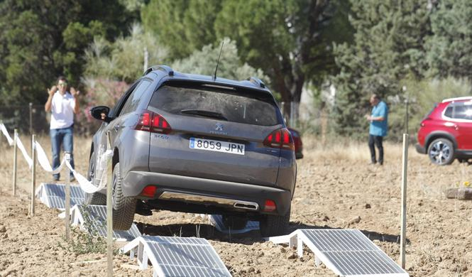 peugeot suv trophy fresno torote circuito
