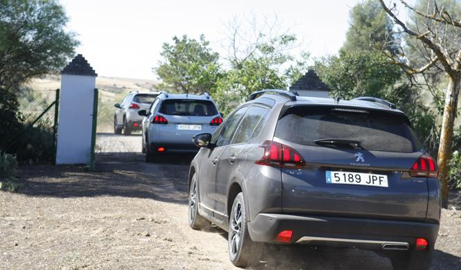 peugeot suv trophy fresno torote offroad
