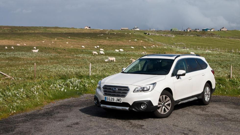 Subaru Outback ovejas escocia