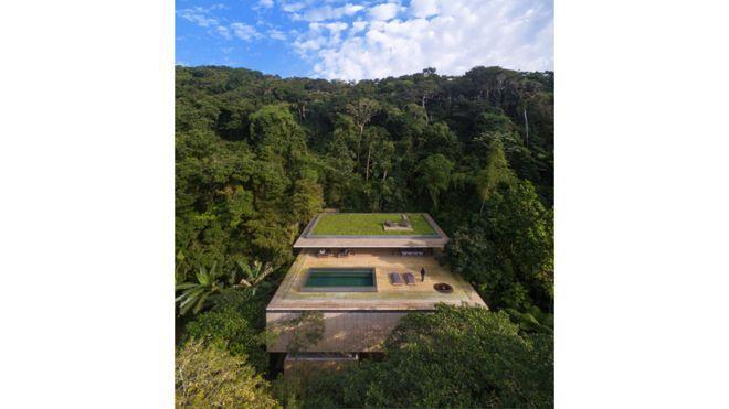La Casa de la Jungla (Jungle House)