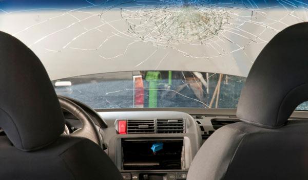 Doce muertos en accidentes durante el fin de semana