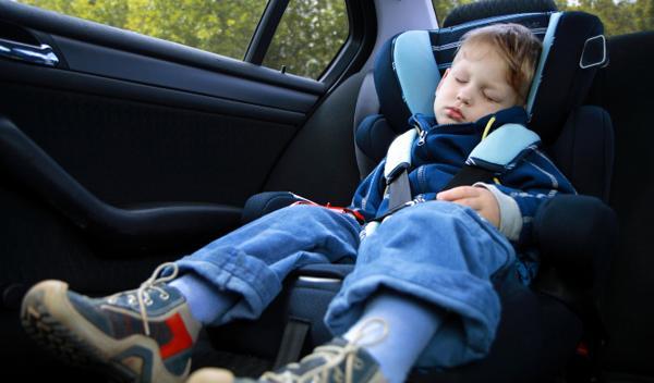 Los padres podrán perder la tutela de los niños sin sillita