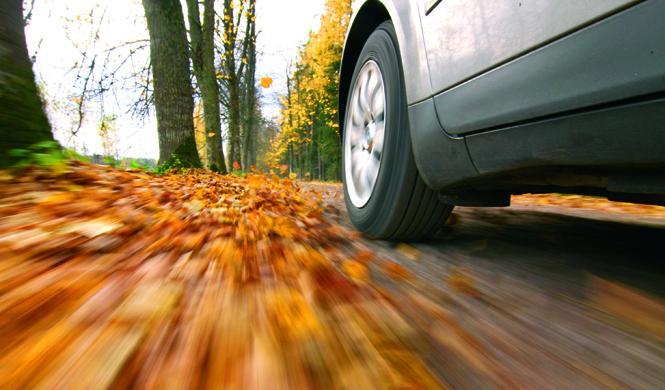 Cómo afrontar los peligros del otoño