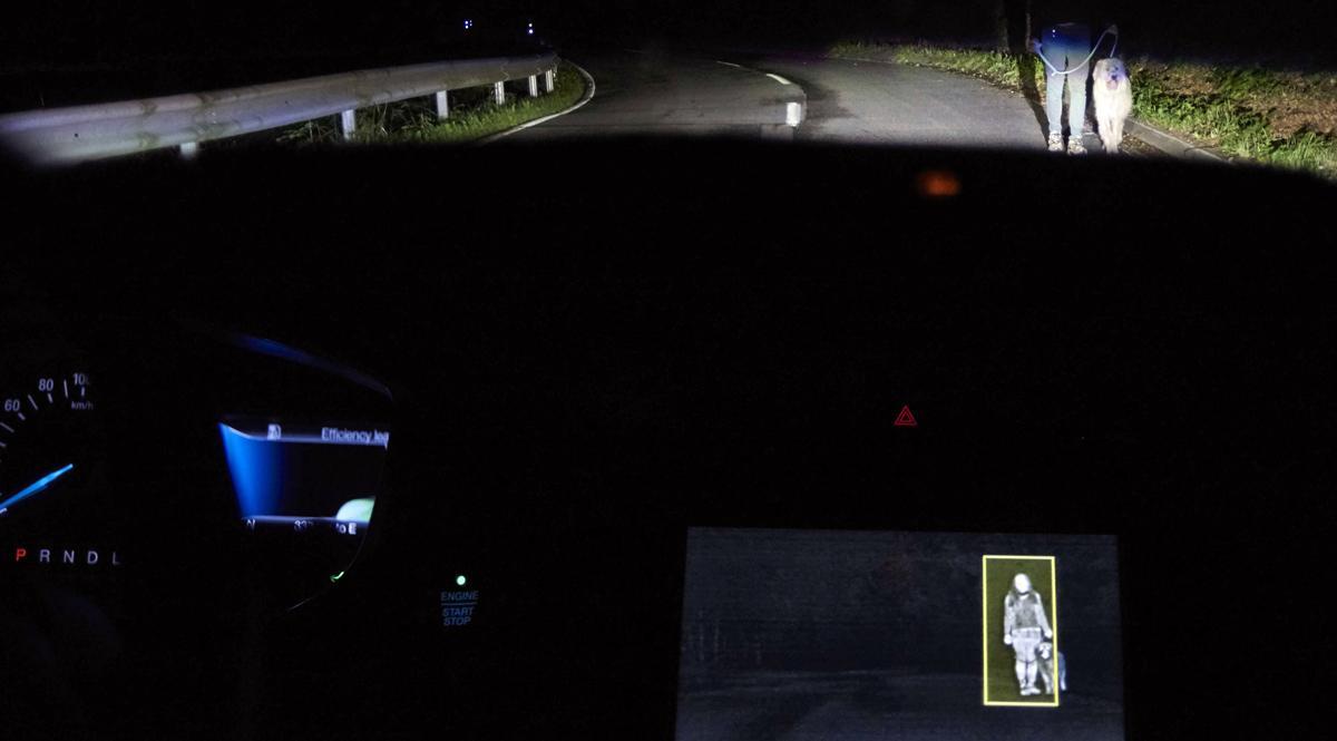 La iluminación que detecta personas y animales en la noche