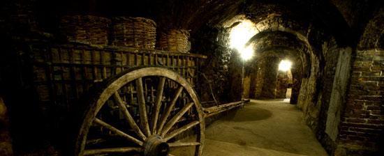 Ruta del vino de Ribera del Duero.