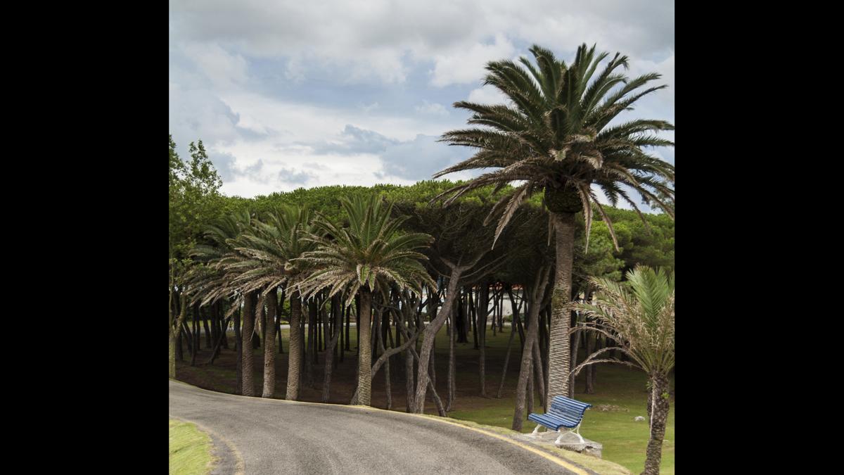 Parque de la Magdalena en Santander