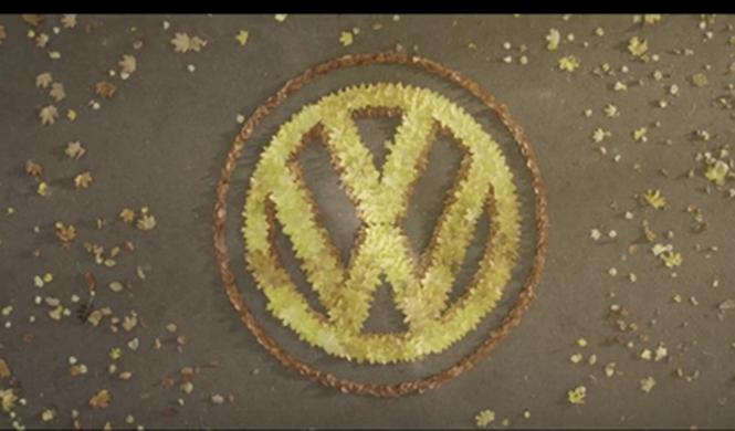 Si no te gusta conducir en otoño, tienes que ver este vídeo