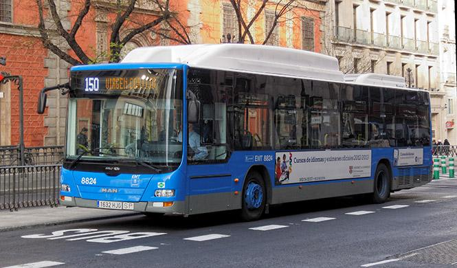 Dos ciudades donde ir en coche es más barato que en bus