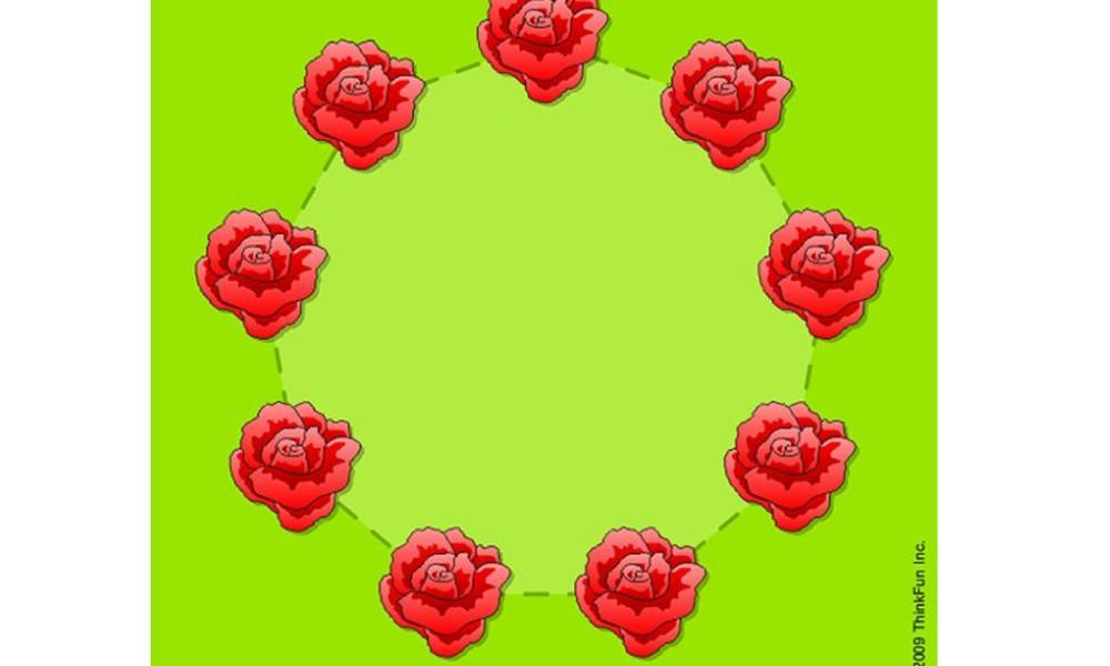 acertijo matematico flores jardin