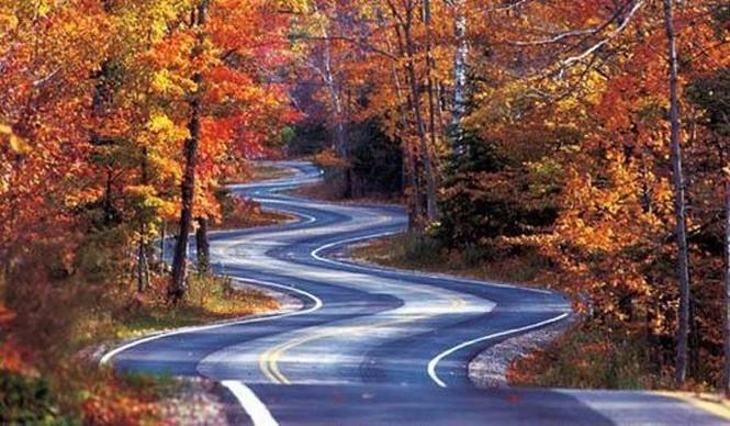 Estas son las mejores carreteras de los Estados Unidos